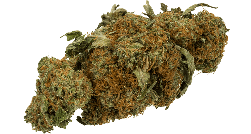 Where Is the Best Place to Buy Marijuana These Days?